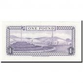 Isle of Man, 1 Pound, Undated (1972), KM:29e, SUP+