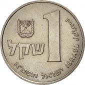 Israel, Sheqel, 1981, TTB, Copper-nickel, KM:111