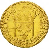Louis XIV, Double Louis d'or à l'écu 1690 Paris, KM 280.1