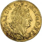 Louis XIV, Louis d'or with 8 L and with ensigns