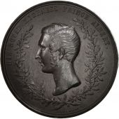 United Kingdom , Prince Albert, London Exhibition, Arts & Culture, Medal, 185...