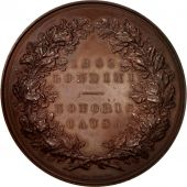 United Kingdom , Kensington Worldwide exhibition, History, Medal, 1862, SUP,...