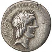Calpurnia, Denarius, 90 BC, Roma, EF(40-45), Silver, Sear:235