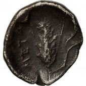 Coin, Lucania, Metapontion, Diobol, EF(40-45), Silver, HN Italy:-