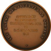 United Kingdom , Médaille, The Royal Horticultural Society, 1961, SPL+, Cuivre