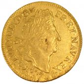 Louis XIV, Double Louis d'or in 4 L
