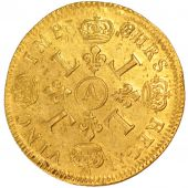 Louis XIV, Double Louis d'or aux 4 L