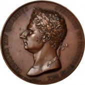Charles XIV Jean, Médaille